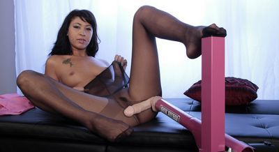 Pantyhose Pops password